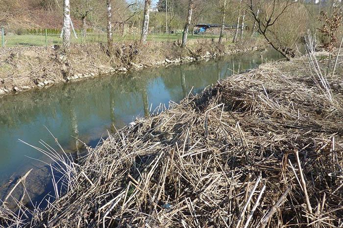 SGD Nord: Gewässerschau am Holzbach