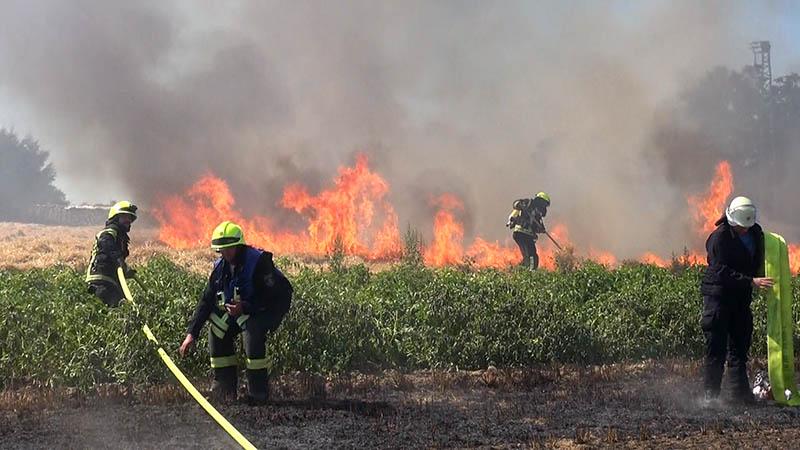 Mähdrescher setzt Feld am Ortsrand von Giershofen in Brand