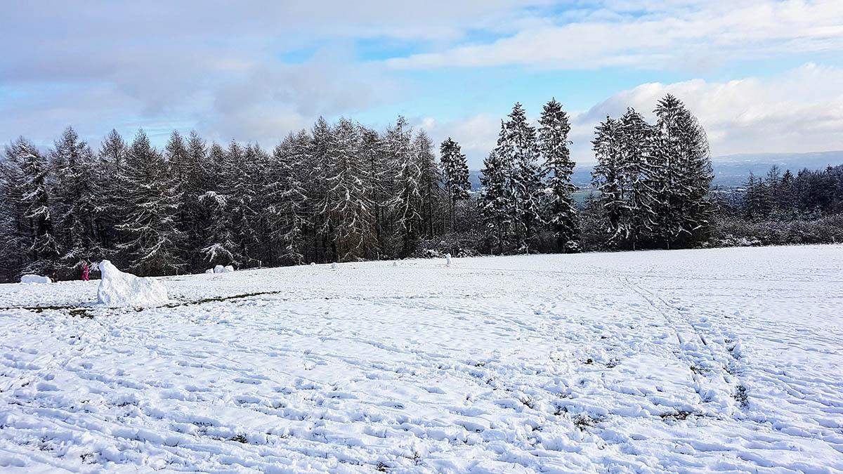 In der Nacht zum Dienstag einsetzender Schneefall