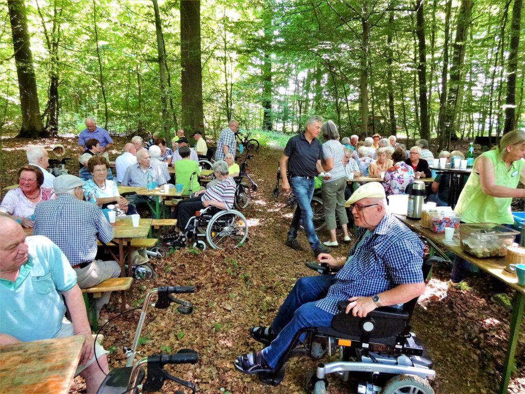 """Senioren freuen sich auf Spaziergang und """"Wald-Café"""""""