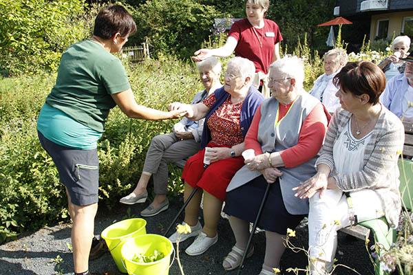 Aus den gepflückten Kräutern stellten die Senioren Smoothies her. Fotos: Anja Loudovici