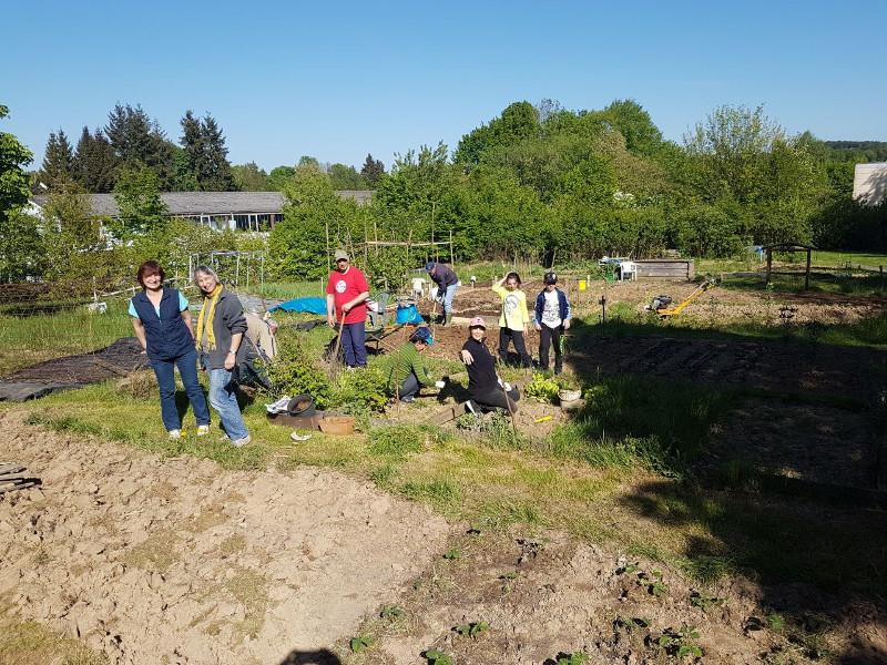 Interkultureller Garten: Gemeinsam arbeiten und feiern