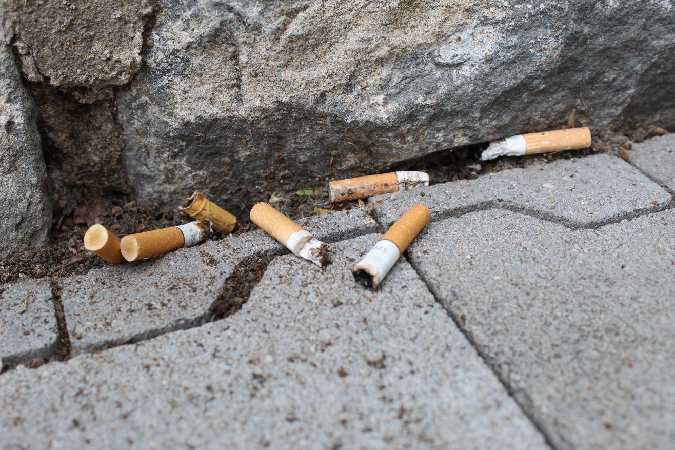 Die Abfallwirtschaft informiert: Wie gefährlich sind Zigarettenstummel für die Umwelt?