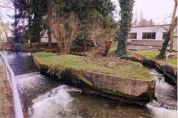 Stadt Neuwied renaturiert den Aubach