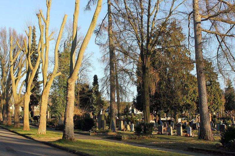 Pflege der Grabstätten vor den Totengedenktagen