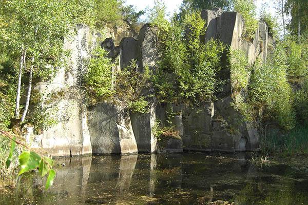Vortrag Lebensraum Steinbruch