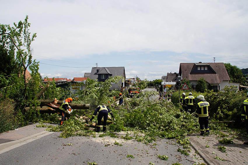 Umgestürzter Baum auf L315 in Wallmerod
