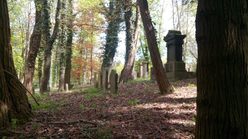 Der jüdische Friedhof in Bendorf zählt zu den ältesten in der Region. Foto: Privat