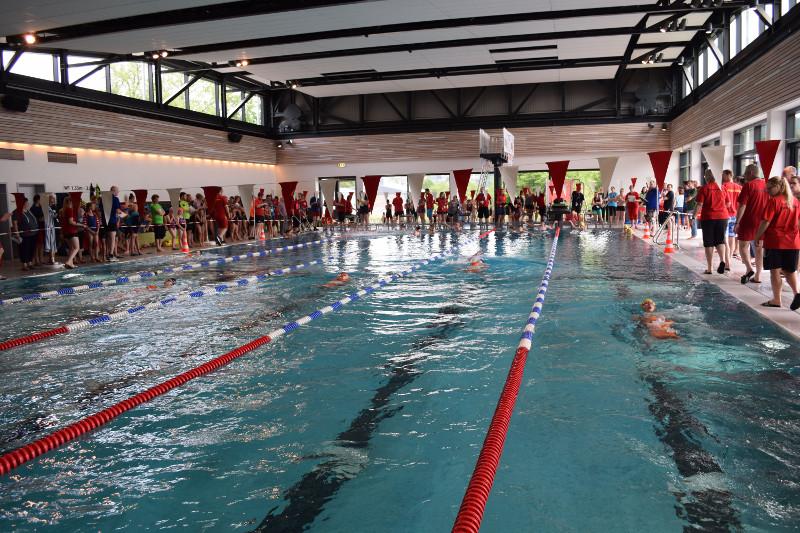 Rettungsschwimmer: Spannende Meisterschaften in Betzdorf