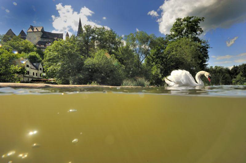 Drunter und drüber - Flussfotos aus der Lahn