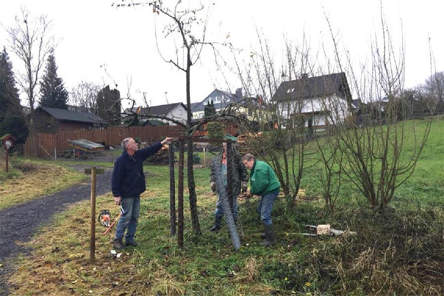 Biotop-Pflege am Himmelsteich in Rüscheid durchgeführt
