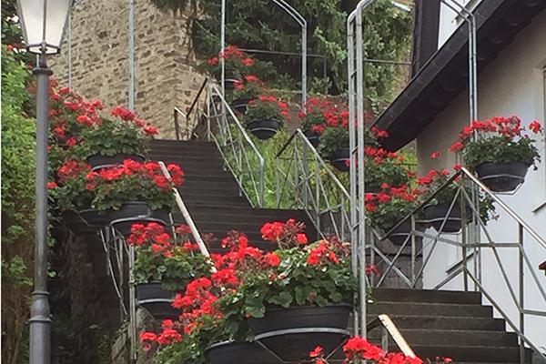 Verkehrsverein Waldbreitbach lässt Blumen sprechen