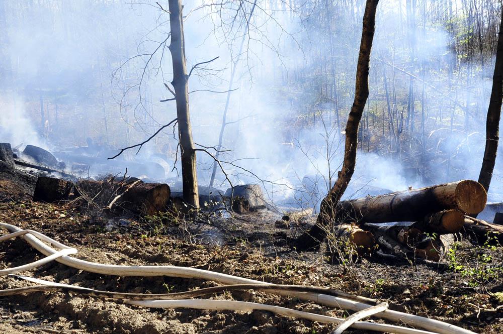 Von dem Feuer waren insgesamt etwa 1.000 Quadratmeter Waldfläche betroffen. (Fotos: kkö)