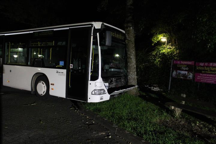 Geklauten Bus gegen Baum gesetzt
