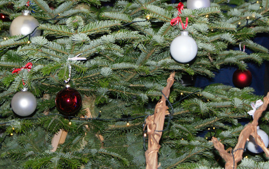 Weihnachtsbaum-Abholung: Der AWB informiert