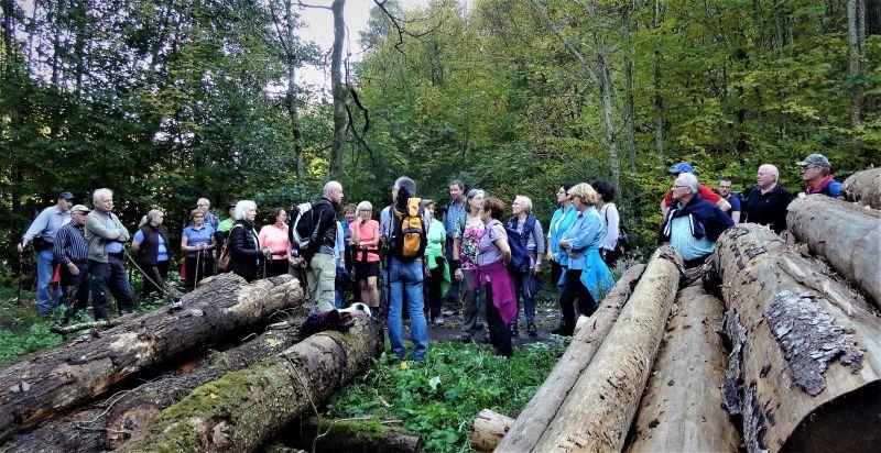 Naturerkundungen und Wanderungen – auch für Kinder - im heimischen Buchfinkenland stehen beim dortigen Westerwald-Verein immer auf dem Programm. Foto: privat