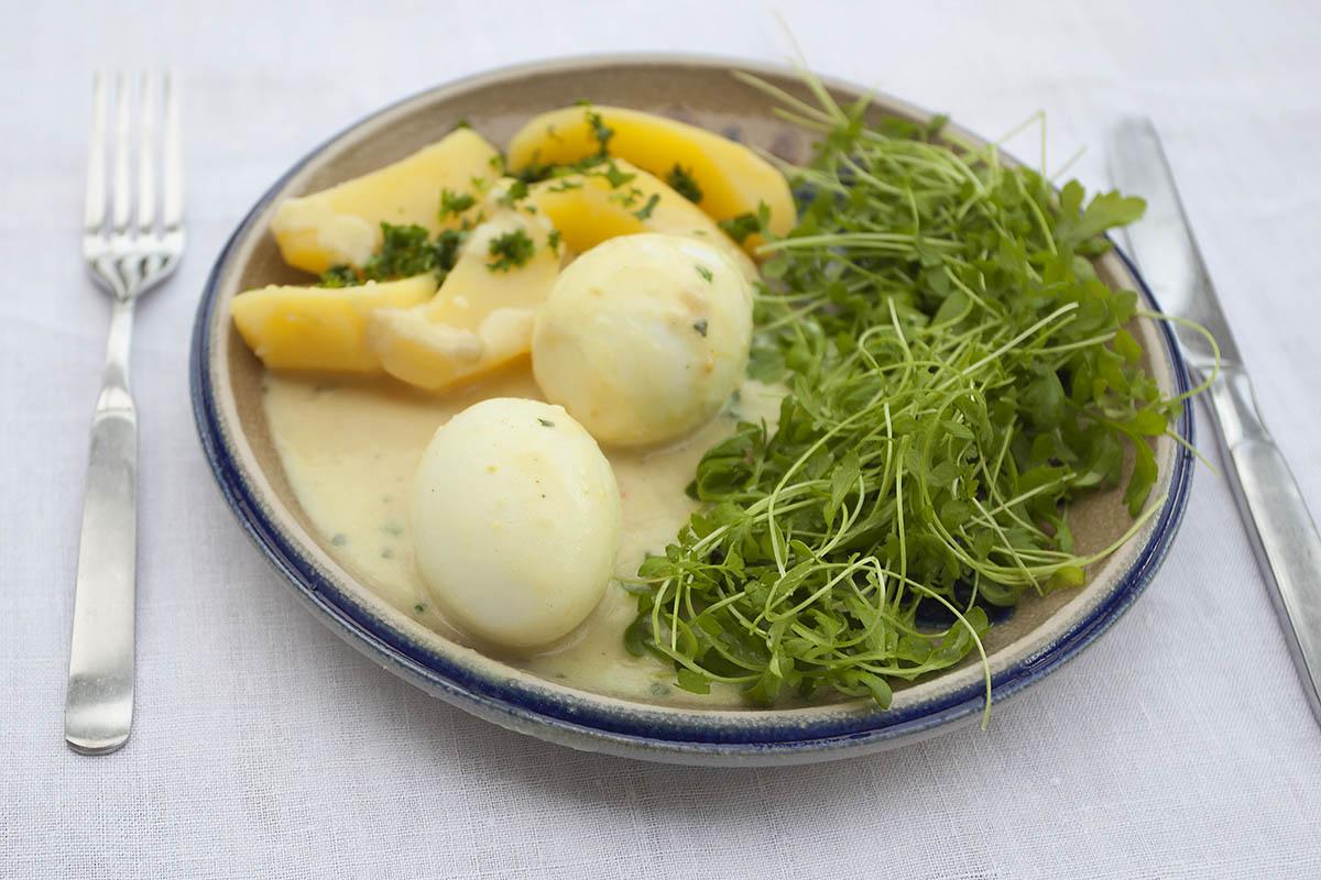 Eier in Senf-Sauce mit Kresse und Salzkartoffeln