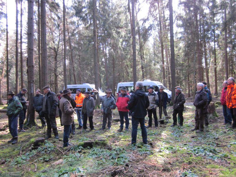 Luxemburger Waldbesitzer zu Gast beim Waldbauverein Altenkirchen