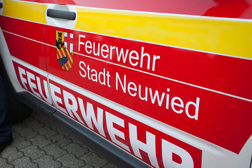 Industriegebiet Neuwied - Nistplätze bei Bauarbeiten zerstört