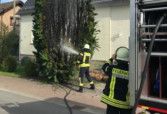 Großer Lebensbaum stand in Etzbach in Flammen