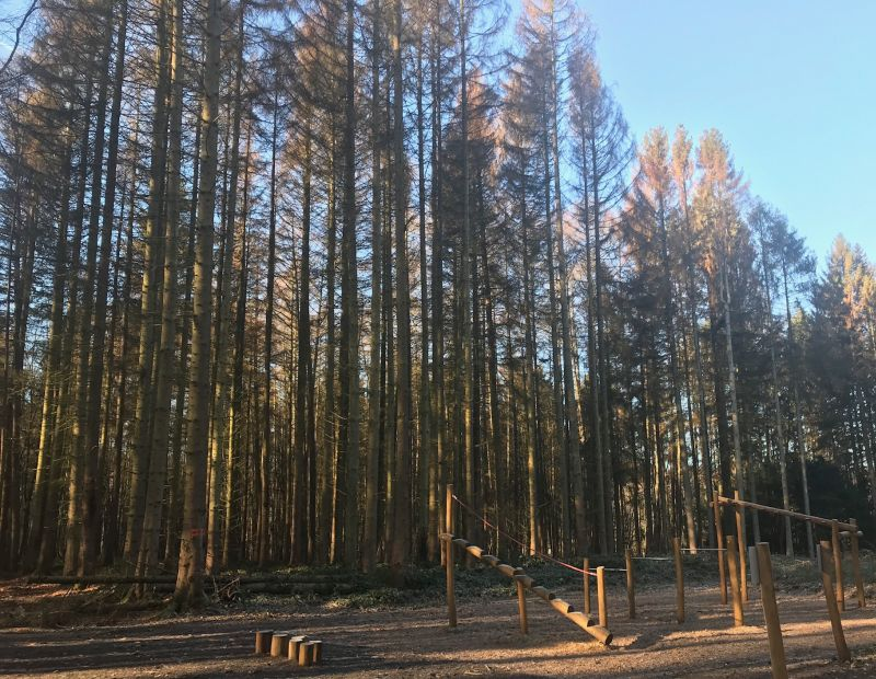 Sperrung des Fitness-Parks wegen Holzerntearbeiten