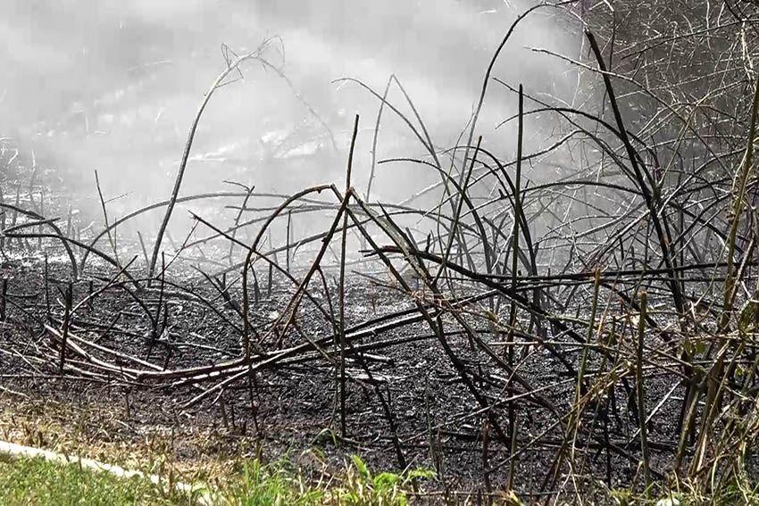 """Waldbrand und Sprengpulver am """"Auge Gottes"""""""