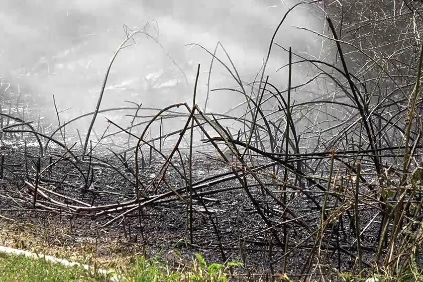 Bei der Grillhütte Niederhofen gab es einen Brand. Symbolfoto