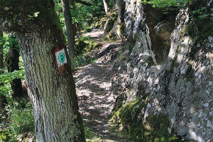 """Georoute """"Vom Teufelsberg zur Caaner Schweiz"""""""