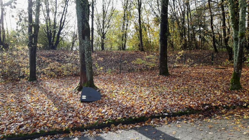 Stadt Montabaur: Unter Bäumen in Frieden ruhen