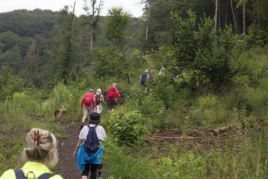 Geführte Wanderung im Brexbachtal rund um Grenzau