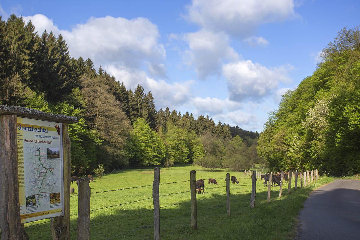 Westerwaldwetter: trocken, sonnig und steigende Temperaturen
