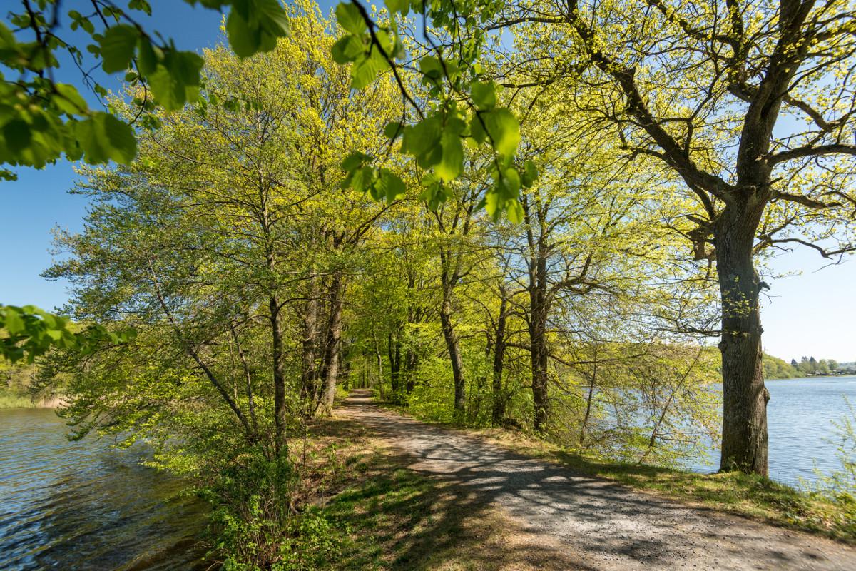 Wandertipp durch den Hachenburger Westerwald von Bürgermeister Peter Klöckner