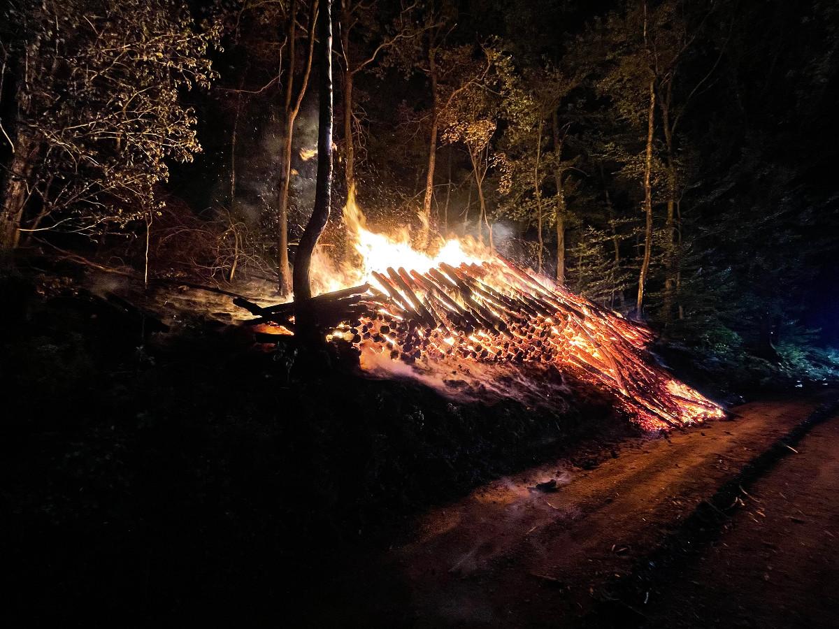 Herdorf: Brennender Holzstapel beschäftigte 50 Feuerwehrleute