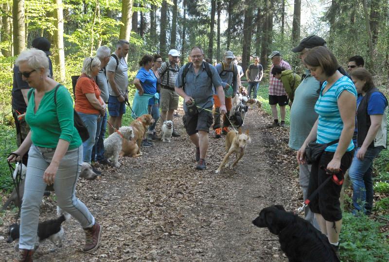 Bei der Erlebniswanderung am Wiesensee konnten Herr und Hund noch viel lernen. Foto: kdh