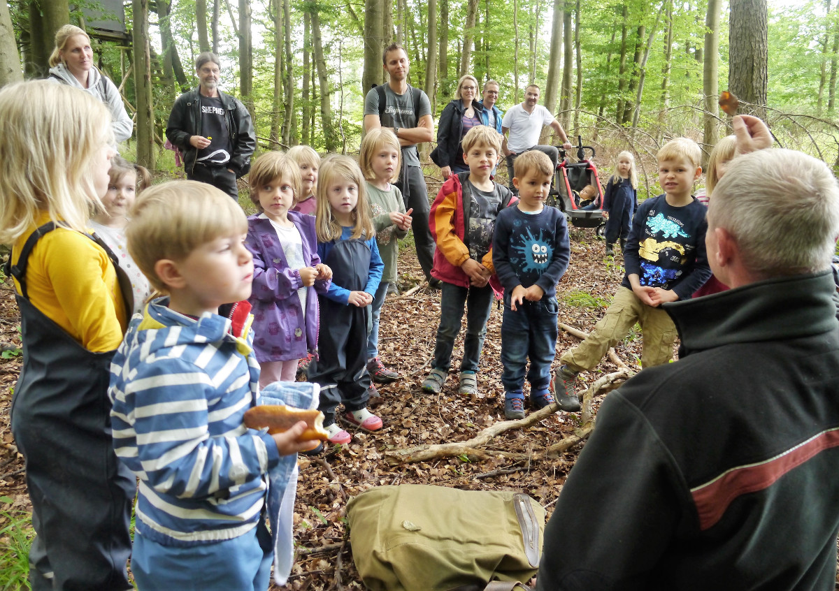 Westerwald-Kinder haben die Geheimnisse der Bäume erkundet