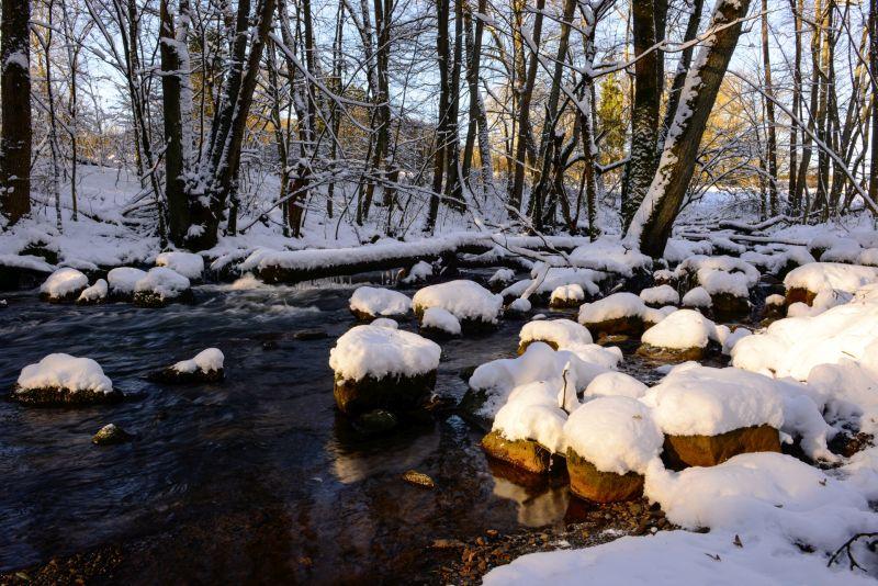 Jahresprogramm 2017 der Naturschutzinitiative