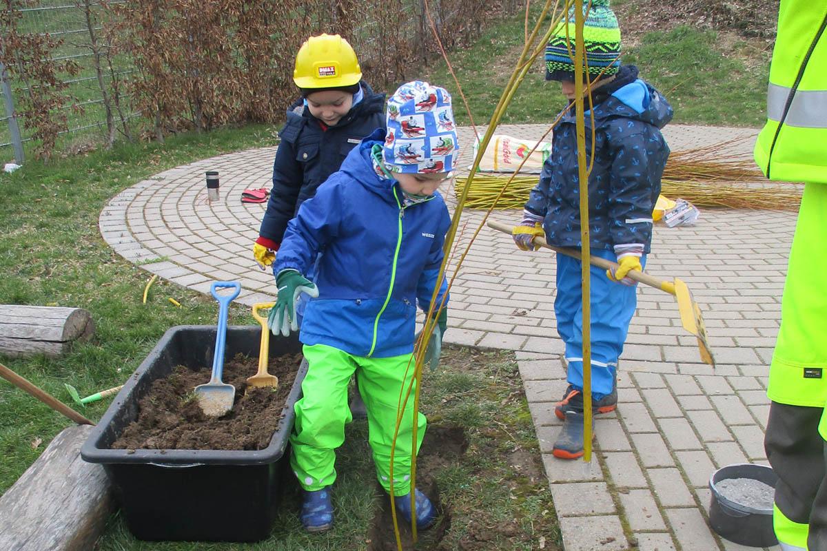 Kinder bauen sich einen Weidentunnel