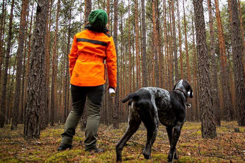 Waldschäden: Mehr Forstpersonal im AK-Land gefordert