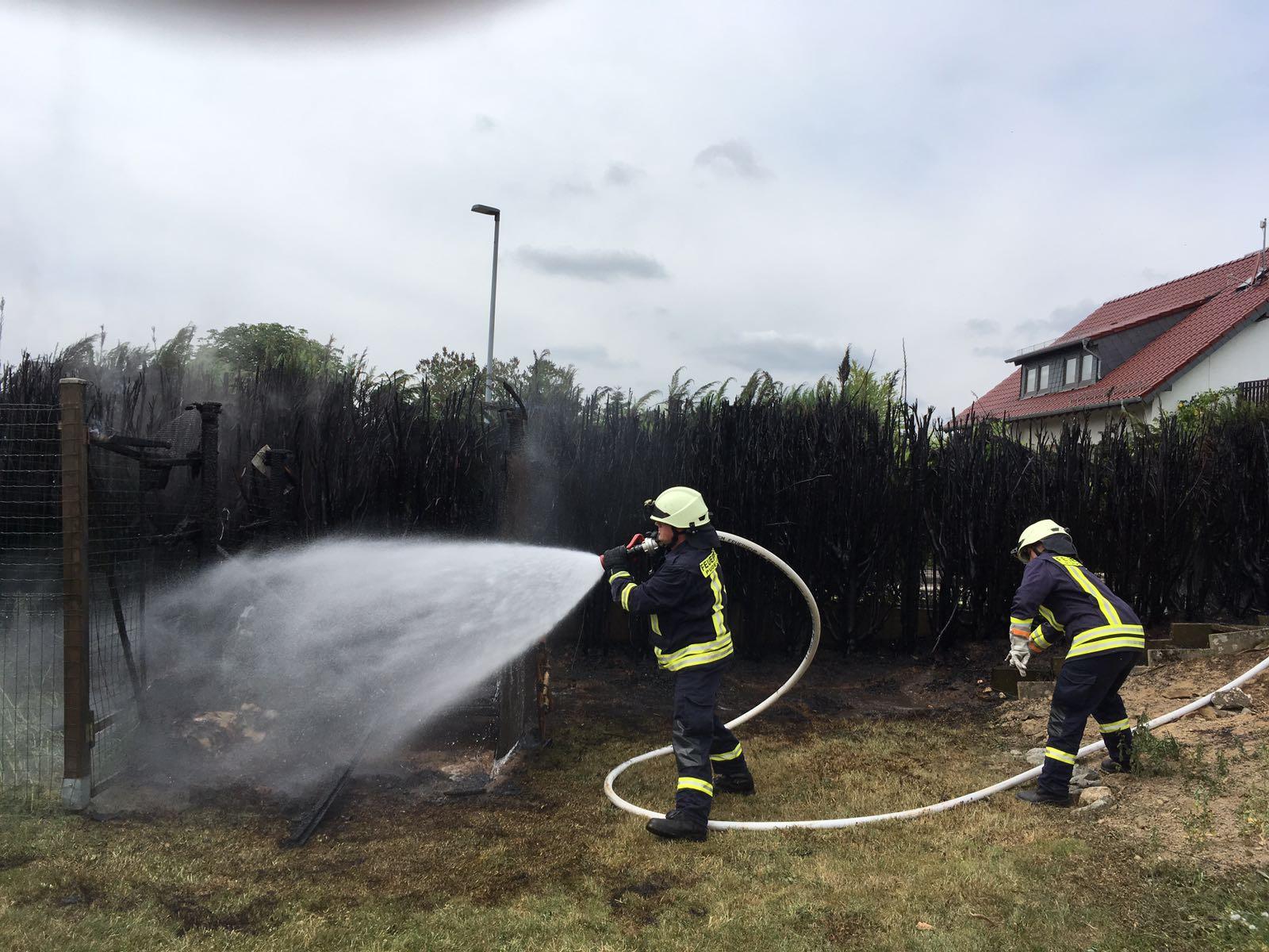 Thuja-Hecke in Lautzert abgebrannt – Bewohnerin verletzt