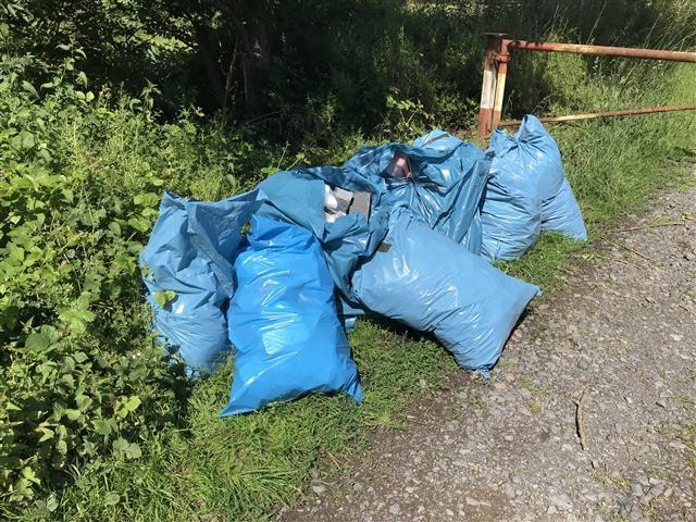Müllsäcke in Natur illegal entsorgt