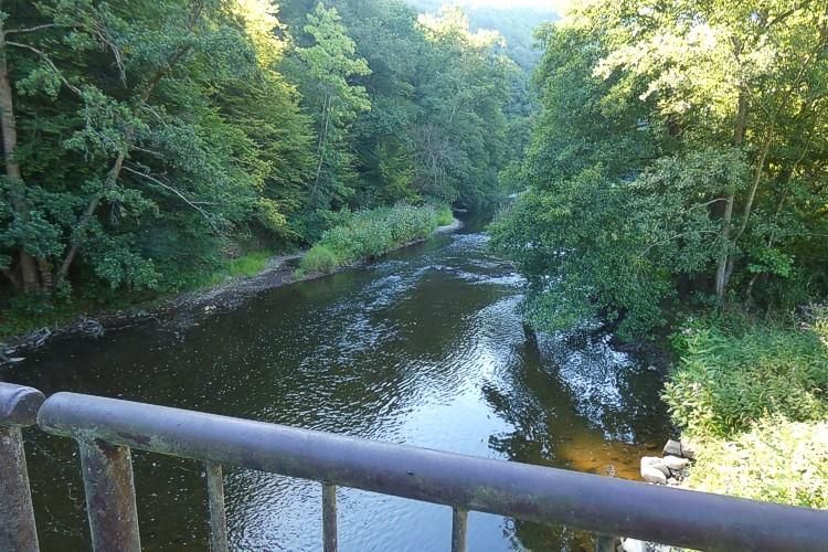 Wandertipp: Rund um das INTASAQUA-Artenschutzprogramm bei Helmeroth an der Nister