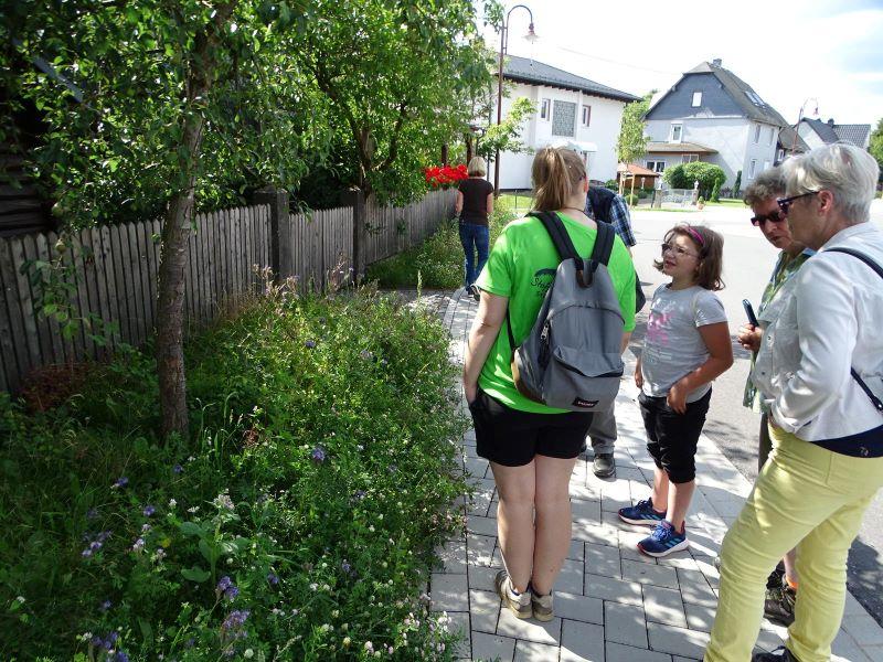 Picknick mit Naturschutzjugend (NAJU) und Gästen