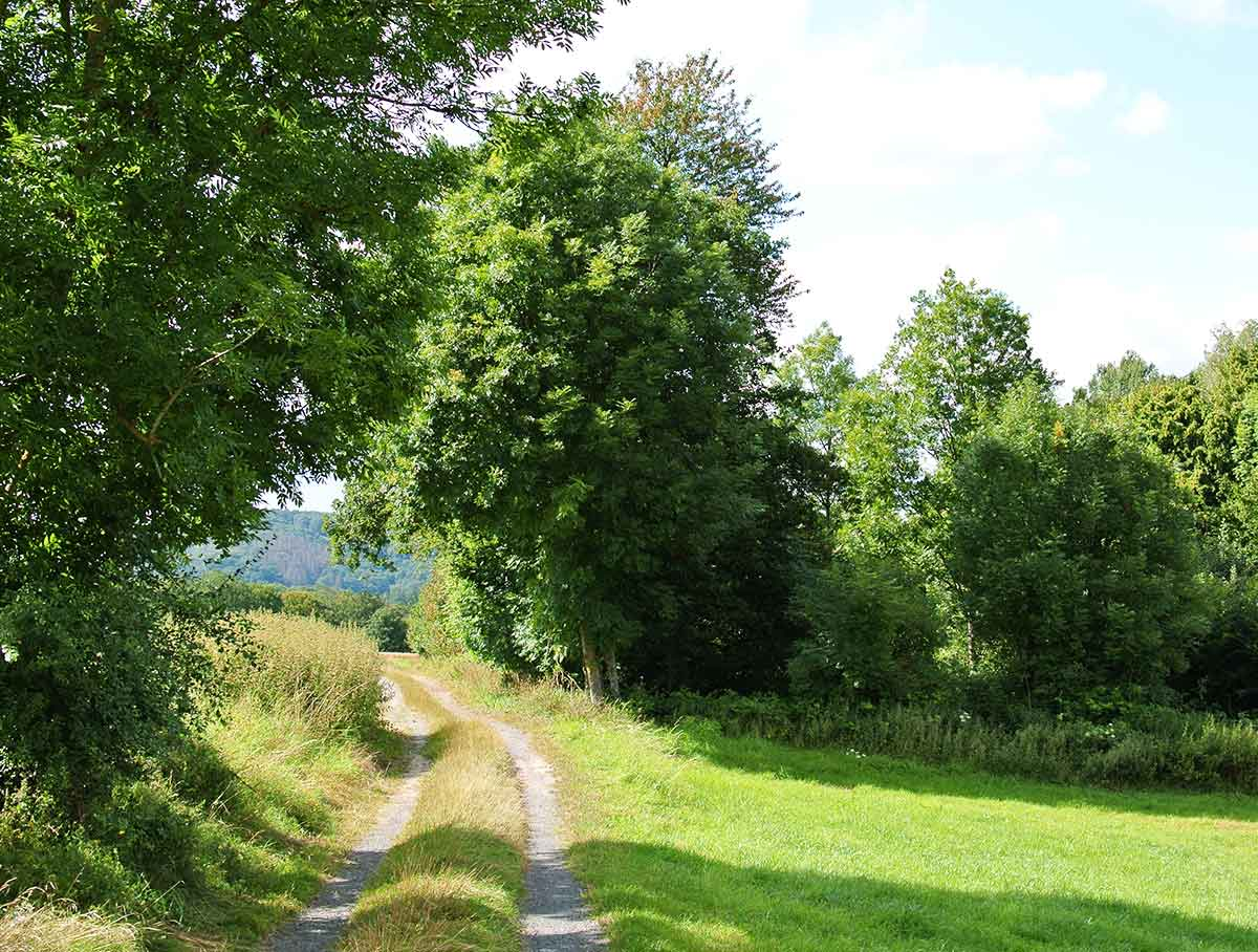 Kostenfreie geführte Wanderung im Kannenbäckerland am 21. August