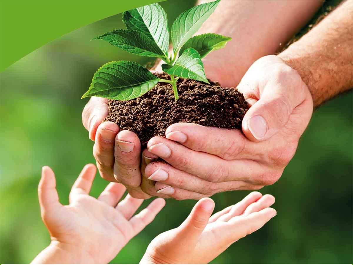 Projekt Klima-Zukunftswald Montabaurer Höhe