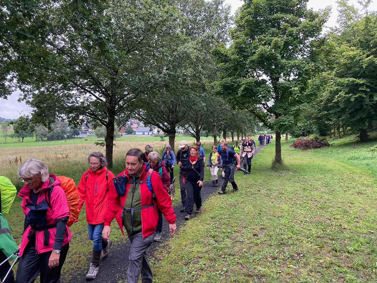 Natur pur - Wandern mit dem Hauptverein des Westerwald-Vereins e.V.