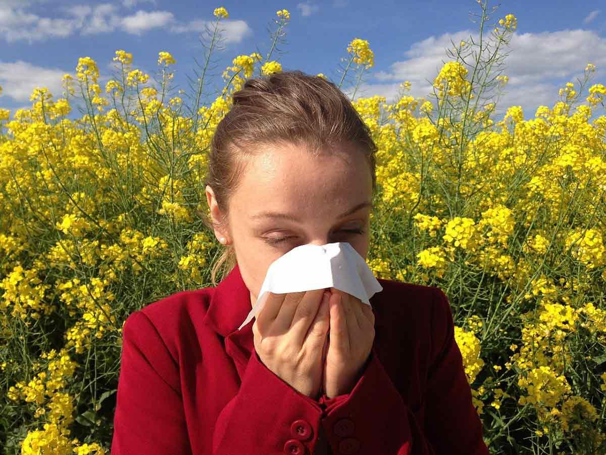 Heuschnupfen und Pollenallergie: Erste Hilfe aus Apotheke und Natur