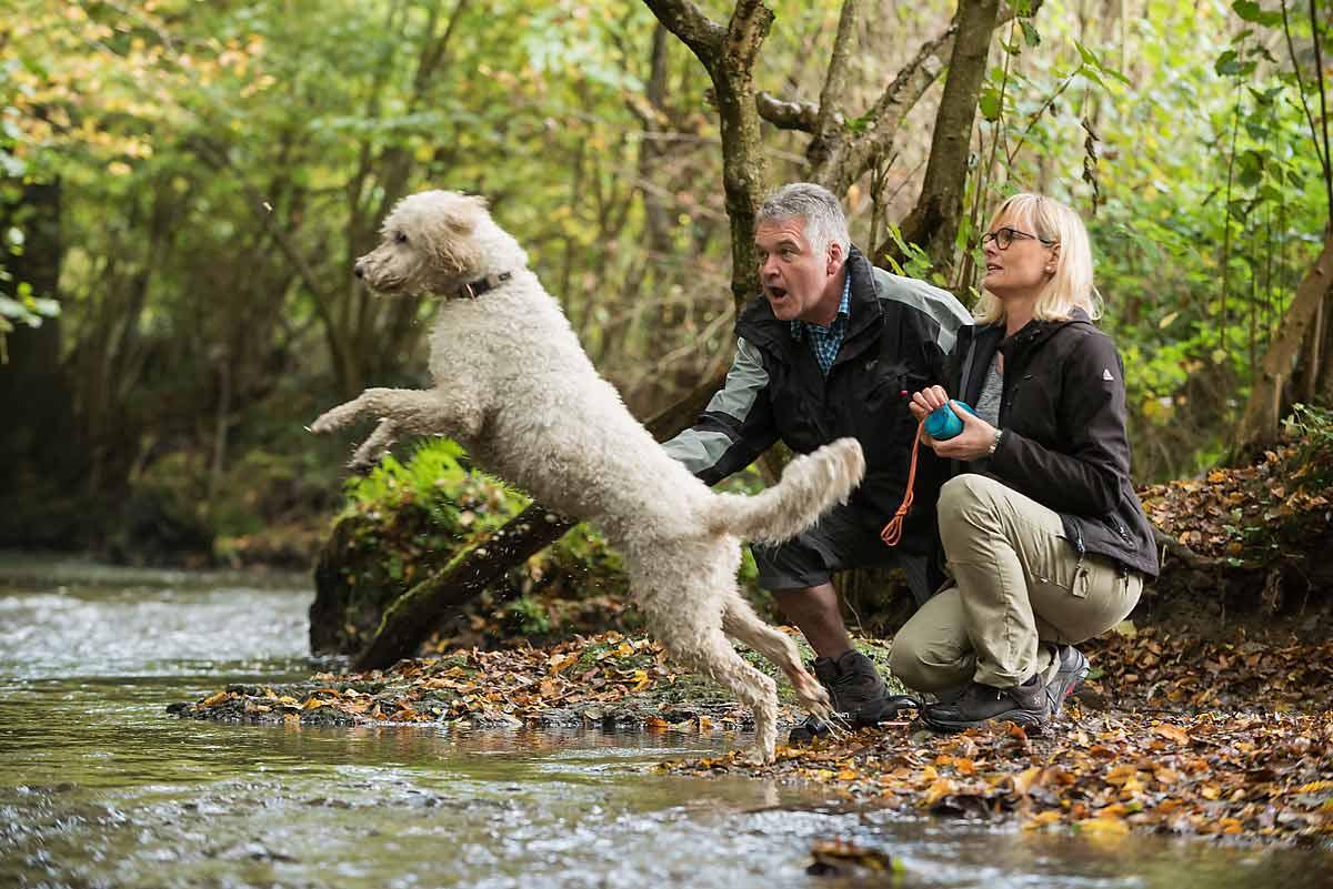 Baden mit Hund: Wo kann der Vierbeiner im Westerwald ins kühle Nass?