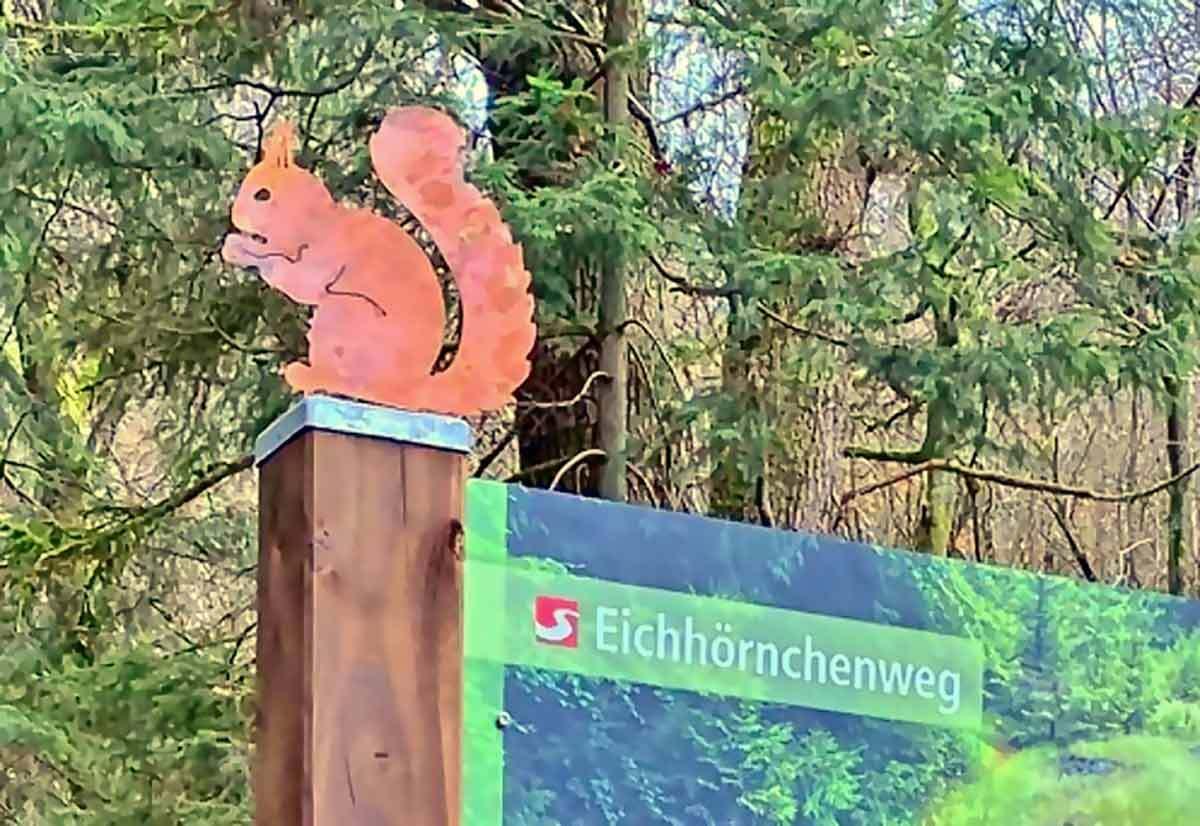 Der Eichhörnchenweg in Niederfischbach: Ein Rundweg für die ganze Familie