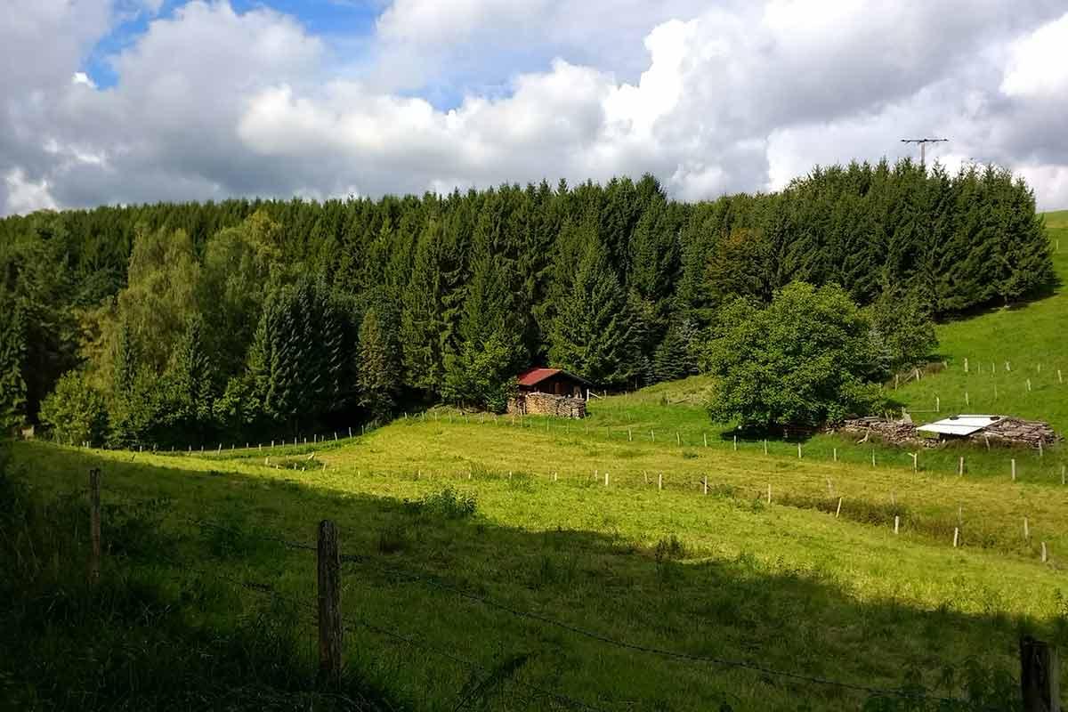 Die Limbacher Runde 22: Wandern auf der Rundtour Romantisches Lauterbachtal