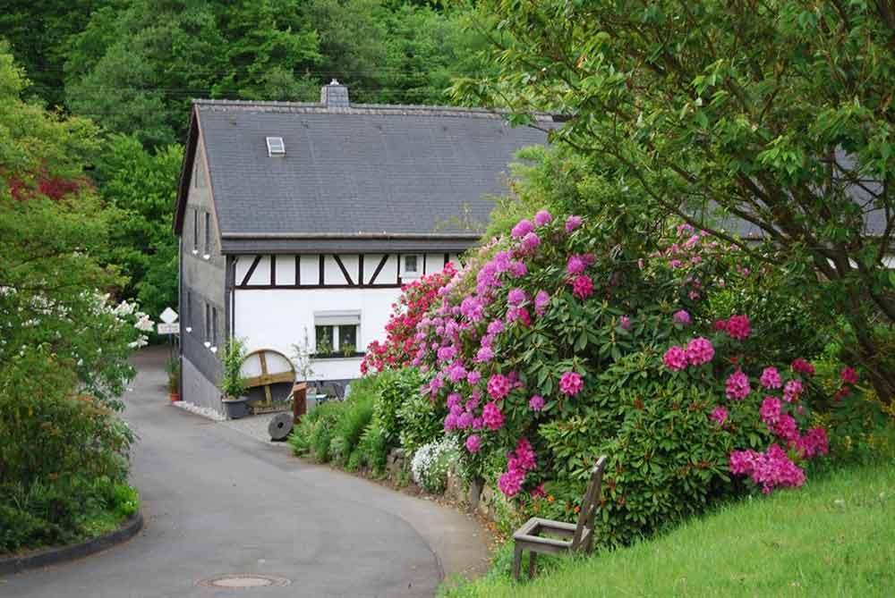 Der Mühlenwanderweg im Elbbachtal: Vorbei an Wassermühlen und der Grube Bindweide